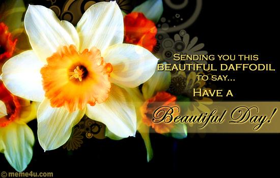 floral wish,daffodil day ecard,card with daffodil flowers