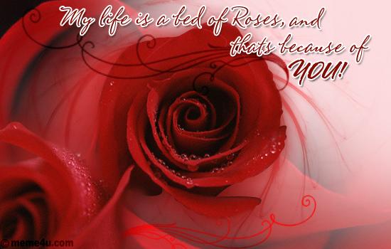 red rose festival, red rose festival ecards, red rose