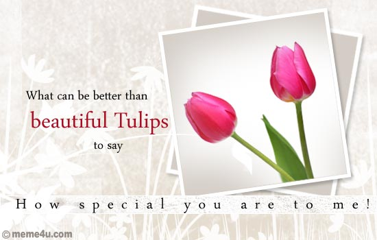tulip day, tulip day ecards, floral wishes