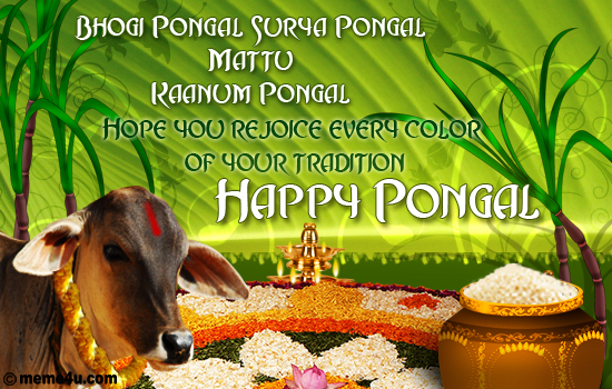 Happy pongal card pongal ecard pongal greeting card bhogi pongal surya pongal mattu pongal hope you rejoice every color of your tradition happy pongal an animated card showing the various aspect of m4hsunfo Gallery