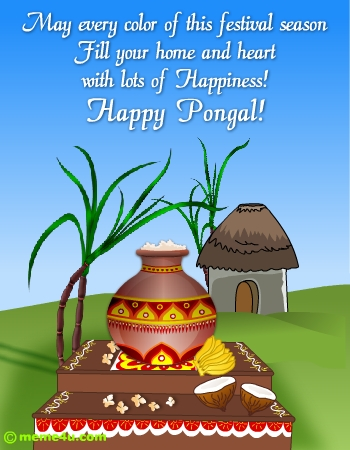 happy pongal wish, pongal greetings, pongal cards