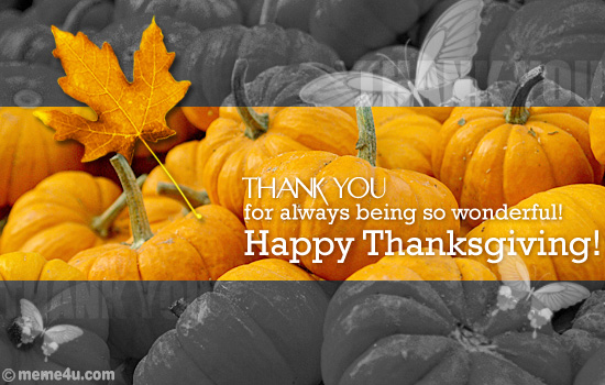 thanksgiving thank you postcard,thanksgiving thank you card,thanksgiving ecard