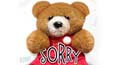 sorry,&nbsp;i am sorry,&nbsp;please forgive me card