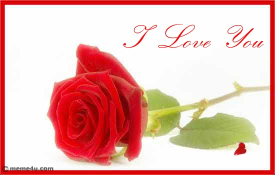 Love You Cards | I Love You Ecards | I Love You Greeting Cards | Rose ...